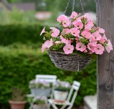 Mandje bloemen